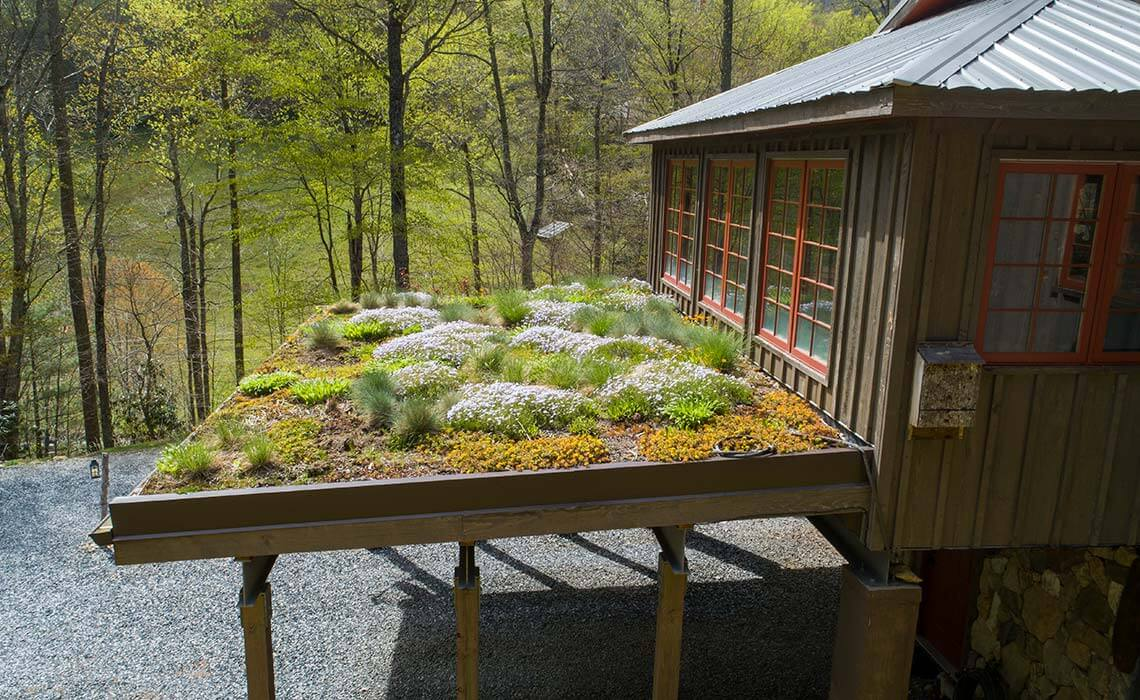 cabin-woods-living-roof-sineath